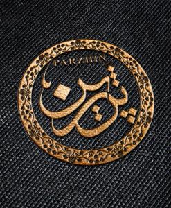 طراحی لوگو پرژین طراحی لوگو طراحی لوگو parzhin 01